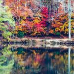 Sweetwater Creek thumbnail