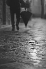 Rainy Walk (Gure Elia) Tags: rainyday blackwhite blancoynegro blackandwhite whiteandblack bn bokeh walking toscana november rain raining charco