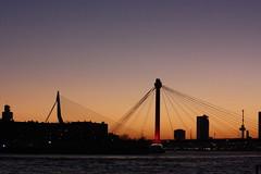 two bridges skyline (eLeM-O) Tags: rotterdam skyline sunset 2016 december lookingsouth bridges nighttime erasmusbridge willemsbrug euromast