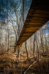 IMG_0768 (Burbank Photography) Tags: canon 6d 17 40 1740l landscape new england cape cod dartmouth frank knowles little river reserve boardwalk marsh