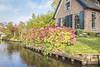 IMG_9952 (digitalarch) Tags: 네덜란드 히트호른 netherlands giethoorn