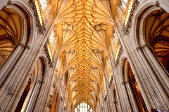 The nave of Winchester Cathedral, Hampshire (iancowe) Tags: winchester cathedral nave ceiling roof gothic english england medieval hampshire stonework uk church stswithin wide angle