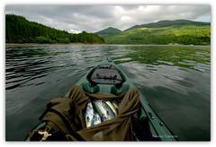 Finding the shoal (Nicolas Valentin) Tags: sea sky mer mountain mountains mackerel scotland marine scenery aqua kayak alba scenic kayaking peche kayakfishing aplusphoto kayakscotland