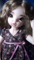 my girl :) (NiceLittleDoll) Tags: doll bisou bjd fairyland ltf faceup yosd littlefee