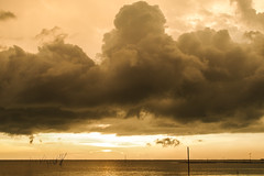 () Tags: sunset f14 olympus panasonic  chiayi dg  omd 25mm
