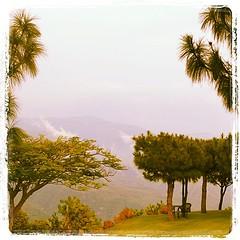 Árboles y nubes #haciendalomajim #haciendasycasonas #zapopan #turismozapopan #hotelescontradicion (haciendalomajim) Tags: square squareformat lordkelvin iphoneography instagramapp uploaded:by=instagram