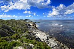 Rottnest Island 397
