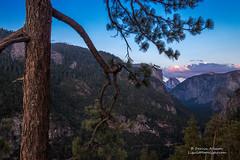 Yosemite Twilight (Darvin Atkeson) Tags: california travel blue sunset vacation sky forest landscape evening nationalpark twilight unitedstates yosemite halfdome vista elcapitan darvin atkeson darv liquidmoonlightcom