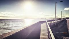 seaside walking (Brixhood) Tags: sea people urban sun haven reflection nature walking seaside nikon meer europe low north images retro iso dk nikkor hafen sonne dnemark danmark nordsee f11 d800 2470 nikkorafs2470mmf28 brixhood
