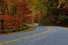 A Broken Promise (Bradley Nash Burgess) Tags: road autumn fall colors nc nikon fallcolors northcarolina roadtonowhere brysoncity greatsmokymountainsnationalpark gsmnp brysoncitync theroadtonowhere d7000 nikond7000