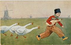 pc volendammer ganzen  1918 (janwillemsen) Tags: goose ganzen volendam oldpostcard