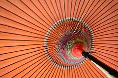 和傘 ~Japanese umbrella~ #Flickr12Days (jirojijp) Tags: red color japan umbrella nikon colorful d800 1835mm blinkagain tplringexcellence bestofblinkwinners blinksuperstars flickr12days