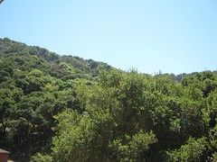 """Angel Island • <a style=""""font-size:0.8em;"""" href=""""http://www.flickr.com/photos/109120354@N07/11042929324/"""" target=""""_blank"""">View on Flickr</a>"""