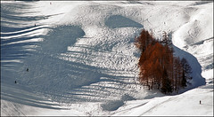 Ski paradise (Katarina 2353) Tags: trip travel trees winter light vacation people italy white ski landscape photography shadows traces trails paisaje paysage courmayeur skiers