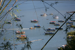 Vista dos barcos na praia da Ilha da madeira - Itagua-RJ. (ABordignon) Tags: boats island rj barcos madeira ilha