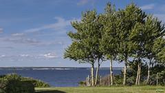 Avernakoe 001 (Hauke Lass) Tags: see meer lass ufer hauke landschaft dänemark danmark havet küste südsee danske küsten dänische dänisches sydhavet lumixgh inselmeer avernakoe lanskabet