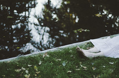 (thisisforlovers) Tags: park parque autumn trees woman lake reflection tree verde green feet girl grass leaves forest hojas lago foot woods árboles poetry branch chica dress bosque pies reflejo árbol otoño rama vestido hierba poesía andreadorantes
