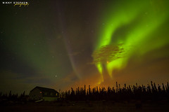 3 Dog Night Hostel and the Northern Lights (djniks) Tags: trees summer sky dog 3 alaska night lights hostel aurora northern kennel fairbanks northernlights auroraborealis borealis northpole canon1740f4 3dognight canon5dmkii