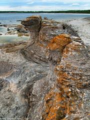 Monsters by the lagoon (@photobjorn) Tags: beach water landscape coast rocks sweden wide wideangle baltic d200 fårö 43 rauk tokina12244 apsc