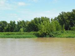 "Río Paraná - San Pedro <a style=""margin-left:10px; font-size:0.8em;"" href=""http://www.flickr.com/photos/62525914@N02/12213241184/"" target=""_blank"">@flickr</a>"