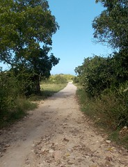 Path to Hotel Atlantico (Hear and Their) Tags: hotel path cuba atlantico guardalavaca holguin