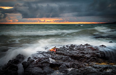 Crab city (Mike Hankey.) Tags: sunset seascape southamerica crab galapagos january2014