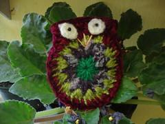DSC05139 (Artesanato com amor by Lu Guimaraes) Tags: artesanato fuxico trico crochê {vision}:{outdoor}=0893 byluguimarães {vision}:{plant}=0592