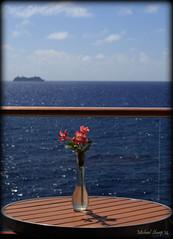 _MG_3937 (michael sharp2009) Tags: cruise shadow flower boat ship balcony sunny vase caribbean railing canoneos 5dmkii canoneos5dmkii mygearandme