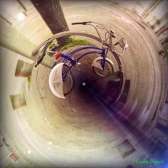 (C.Bry@nt) Tags: street apple oslo norway circle norge calle gate bicicleta norwegian gata noruega bicicle akershus scandinavian circulo iphone norsk norske skandinavia iphone5 iphoneography