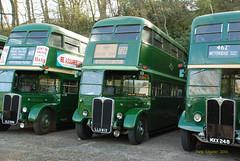 OLD566 1954 AEC Regent III with 1950 Weymann built body ex LT number RT4779, LLU613 1950 AEC Regent III with Weymann built RT8/1 Body ex LT RT3254, MXX248 1952 AEC Regent III with Weymann Low Bridge Body ex LT RLH48 (Pete Edgeler) Tags: brooklands classicbus