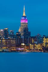 Tower Lights (Amar Raavi) Tags: empirestatebuilding manhattan newyorkcity nyc ny newyork cityscape iconic building hudsonriver river waterfront bluehour bluesky longexposure dusk outdoors city colorful towerlights ringofhonor onlymakebelieve purple blue gold skyscrapers skyline