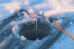 ice-hole and fishing tackle (mikhafff1984) Tags: catching closeup cold fish fishing freeze fresh freshness freshwater glass good hobby hole hook ice lake luck natural nature pickerel reel season snow spool sports surface tackle temperature tree water white winter wintry