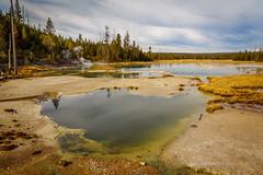Norris Geyser Basin, Yellowstone National Park. (scepdoll) Tags: yellowstonenationalpark wyoming montana geysers norris oldfaithful cyanobacteria bluegreenalgae oxbowbend grandtetonnationalpark