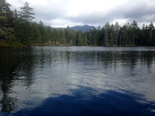 Draper Pond - www.amazingfishametric.com