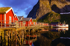 Golden hour in Reine (Dmytro Korol) Tags: lofoten moskenes moskenesoya nordland norway reine reinefjorden scandinavia arctic bay beach boat cabin cloud clouds coast coastline colors cottage destination dock europe fishing fjord glacier harbor house huts islands isle landscape lodge midnight midnightsun mountains nature nordic northern norwegian ocean outdoors peaks pier polar recreation reflection relaxation roof rorbuer sea seascape serenity ship sun sunset tourism town traditional tranquil travel vessel village water wooden yacht