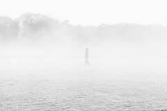 (Exi5tence Twistr) Tags: silhouette fog highkey autumn