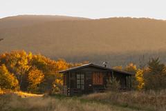 Autumn (Djordje Petrovic) Tags: autumn jesen color serbia srbija nikond80 tamron70200mm tamron mountain sunset nature house light photo goc
