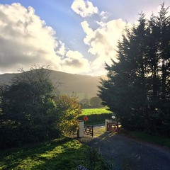 The view from the new gaff #Ardpatrick #view #irish #house #sky #mountains #gate #home #sun #clouds (AlanMc69) Tags: shine iphone morning ireland sun home instagramapp square squareformat iphoneography