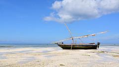 Kizimkazi Beach (sagimihaly) Tags: africa tanzania zanzibar summer vacation kizimkazi indianocean ocean sand whitesand endlessblue beach blue boat sailboat dhow
