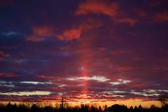 pillar of light (thatgirlwiththekicks) Tags: sunset dusk pillar light evening clouds magenta fuschia blue purple golden orange sky skyscape trees silhouette stthomas ontario canada november