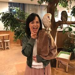 ふくろうのいる森カフェ名古屋栄店 いとうまい子さんが登場! #ふくろうカフェ  #ふくろうのいる森カフェ  #いとうまい子  #伊藤麻衣子