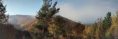 Autumnal Ahr Valley PANORAMA (lstr  clonn) Tags: wein herbst autumn wine rotweinwanderweg germany rhineland leaves