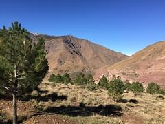 (NaomiQYTL) Tags: landscape trekatlas berber atlasmountains mountains highatlas atlas morocco holiday travel