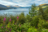 Sea-loch in summer, Loch Carron. (Scotland by NJC.) Tags: stromeferry scotland unitedkingdom gb beautiful جَمِيل bonito 美丽 lijep krásný smuk precioso kaunis beau schön όμορφοσ bello 美しい 아름다운 vakker piękny frumos красивый vacker สวยงาม güzel красивий fjord inlet sound creek firth sealoch enseada 水湾 ensenada crique bucht insenatura 入り江 작은 만 alba caledonia اِسْكُتْلانْدا escócia 苏格兰 škotska skotsko skotland schotland skotlanti écosse schottland σκωτία scozia スコットランド 스코틀랜드 skottland szkocja scoția