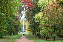 Canadian Avenue ~ towards the Totem Pole (Polyrus) Tags: canadianavenue totempole virginiawater autumnalcolours fall trees