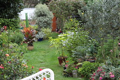 Bruni's beautiful garden Oct 16 1 (Anne Gilmour) Tags: walkers