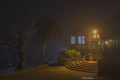 A foggy night (miroslav.tokarsky) Tags: pentax pentaxart fog foggy night evening hotel spooky mood moody creepy tree trees stairs light warm cold color architecture magic magicmoment calm peace gold landscape bestshotoftheday