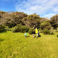 Exploring. West Cove, Erith Island.