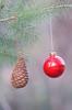 Ornaments (Neal D) Tags: bc surrey crescentbeach christmas ornaments tree