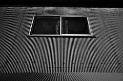 _R015080 (yukio sakaue) Tags: ricohgr gr reflection bw blackandwhite border horizon shadow silhouette